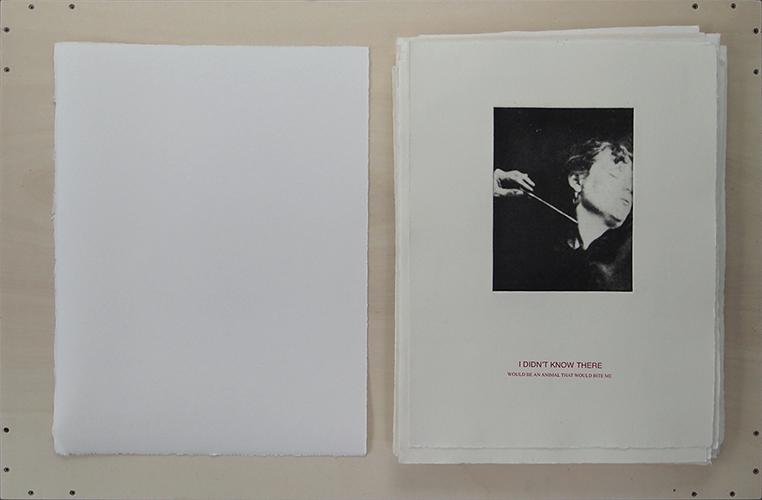 http://www.katharinazimmerhackl.de/files/gimgs/78_hysteriehistorydrucke1klein.jpg